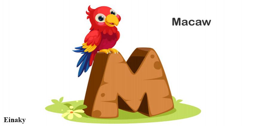 آموزش حرف M زبان انگلیسی