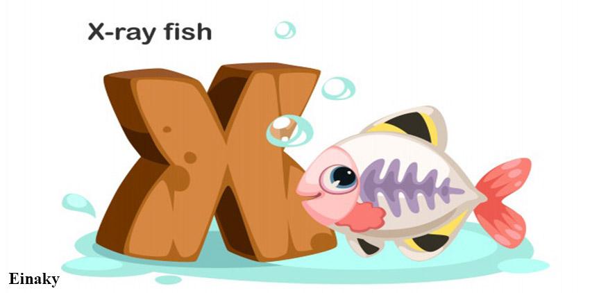 آموزش حرف X زبان انگلیسی