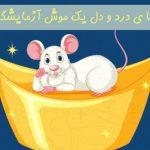 انشا ی درد و دل یک موش آزمایشگاهی